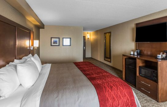 Zimmer RAMADA - KNOXVILLE