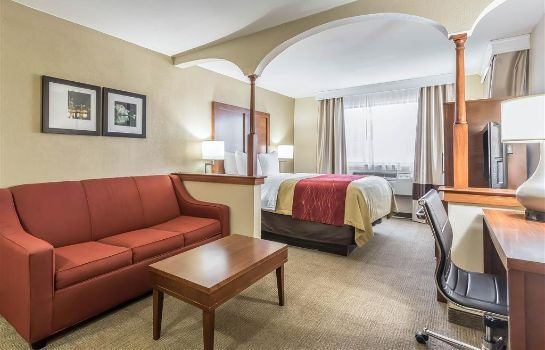 Suite Comfort Inn Nashville West