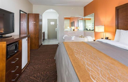 Suite Econo Lodge Inn and Suites East Houston