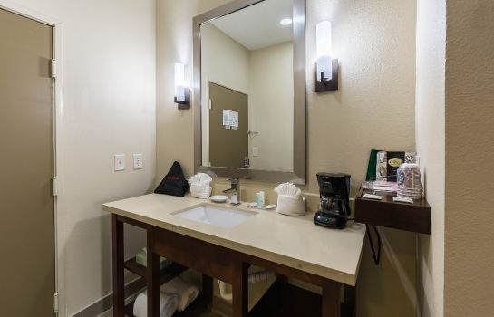 Zimmer Econo Lodge Inn and Suites East Houston
