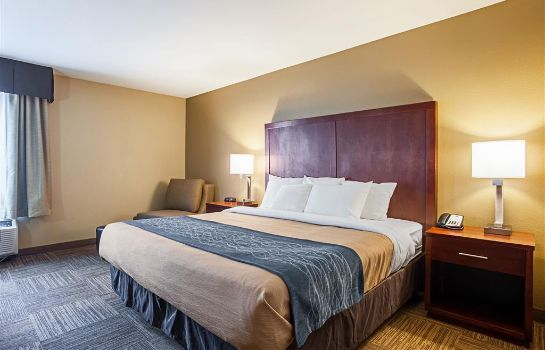Habitación Comfort Inn and Suites Sea-Tac Airport