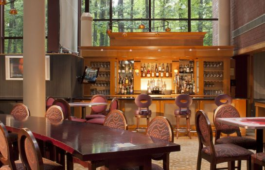Hotel bar Crowne Plaza ATLANTA PERIMETER AT RAVINIA