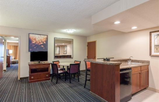 Suite WYNDHAM DALLAS SUITES - PARK C