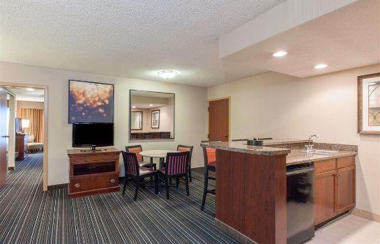 Suite Sonesta Suites Dallas