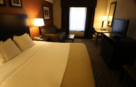 Room Holiday Inn Express & Suites DANBURY - I-84