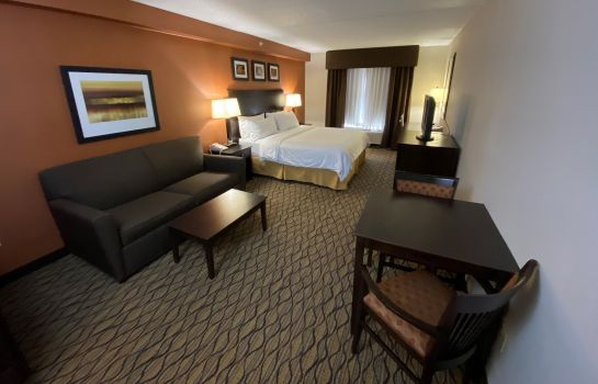 Zimmer Holiday Inn Express & Suites DANBURY - I-84