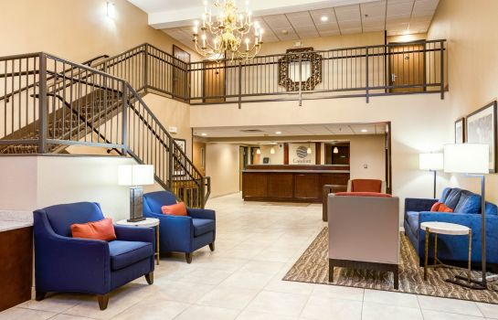 Hall Comfort Inn Lexington