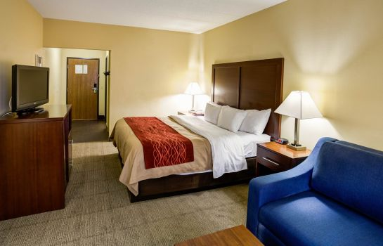 Room Comfort Inn Lexington