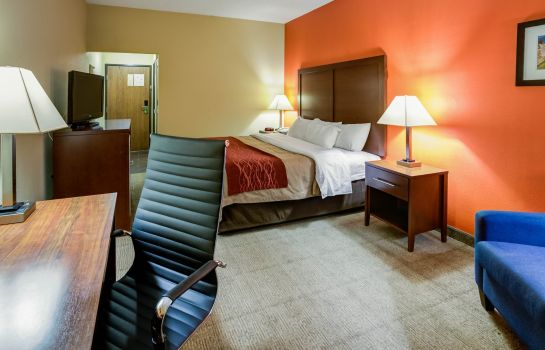 Kamers Comfort Inn Lexington
