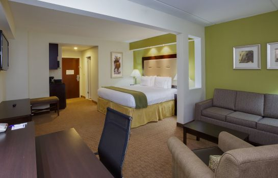 Zimmer Holiday Inn Express & Suites LAUREL