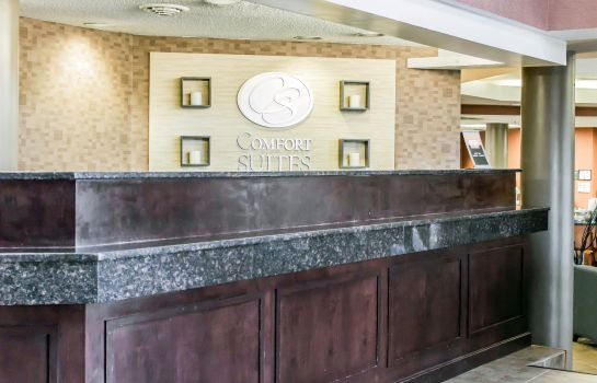 Lobby Comfort Suites Raleigh Durham Airport/RT Comfort Suites Raleigh Durham Airport/RT