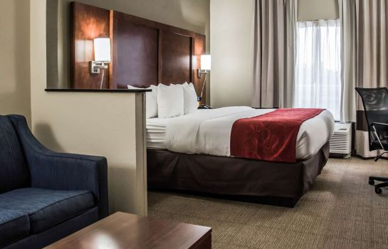 Suite Comfort Suites University - Research Par