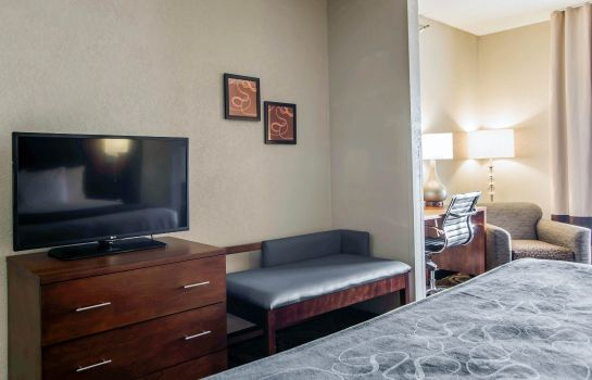 Camera Comfort Suites Pineville