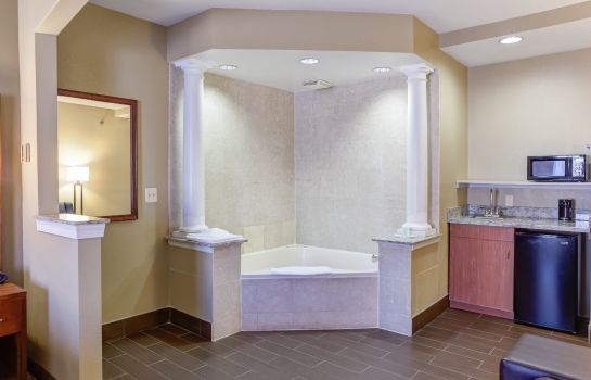 Room Comfort Suites Newark - Harrison