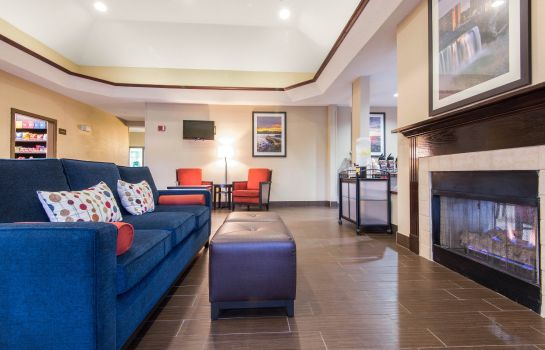 Hotelhalle Comfort Suites Rochester