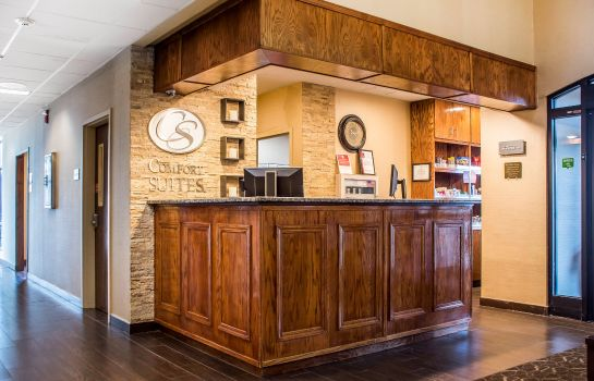 Hotelhalle Comfort Suites Buffalo Airport
