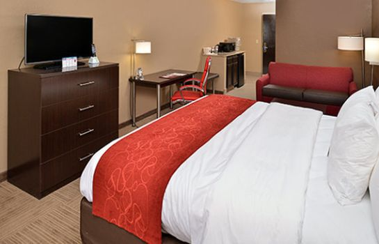 Room Comfort Suites Columbus