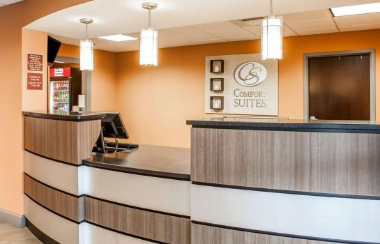 Hol hotelowy Comfort Suites Knoxville West - Farragut