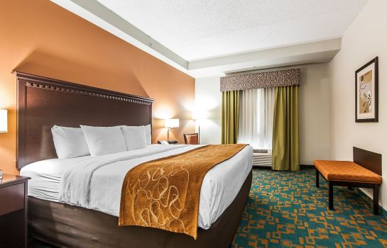 Chambre Comfort Suites Knoxville West - Farragut