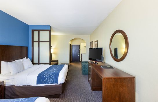 Zimmer Comfort Suites Airport North