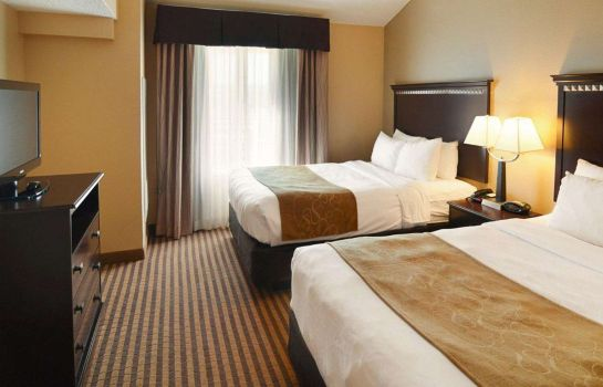 Room Comfort Suites DFW Airport