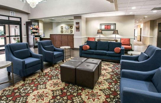 Hotelhalle Comfort Suites Willowbrook