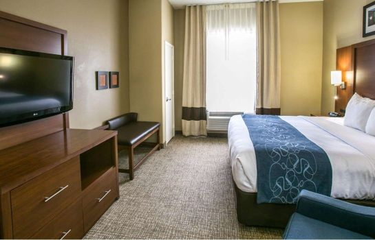 Suite Comfort Suites Willowbrook