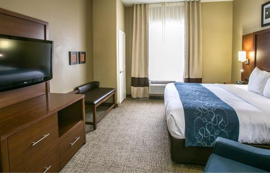 Suite Comfort Suites Hwy 249 at Louetta
