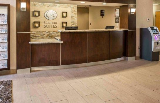 Hall de l'hôtel Comfort Suites Stafford Near Sugarland