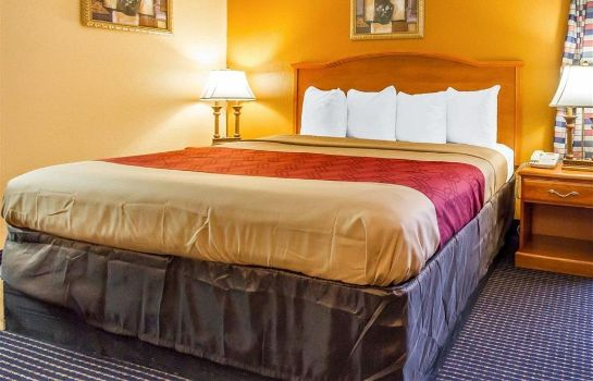 Suite Econo Lodge Inn and Suites Evergreen