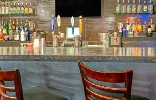 Hotel-Bar DAYS INN ORLANDO MILLENIA MALL
