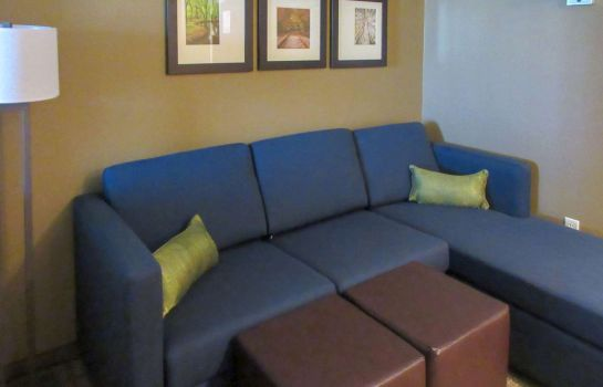 Suite Comfort Inn & Suites - Harrisburg Airport - Hershey South