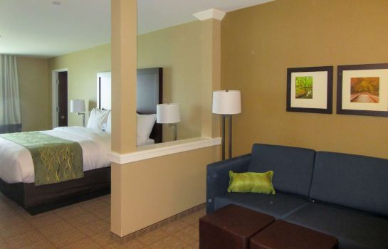 Suite Comfort Inn and Suites - Harrisburg Airp