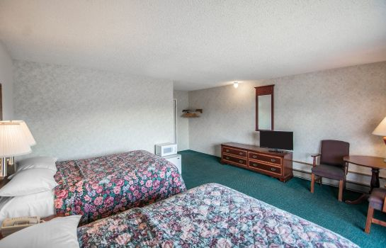 Zimmer Econo Lodge Hornell
