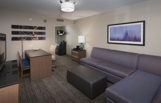 Suite Embassy Suites by Hilton Chicago Magnificent Mile