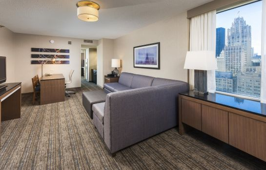 Room Embassy Suites by Hilton Chicago Magnificent Mile