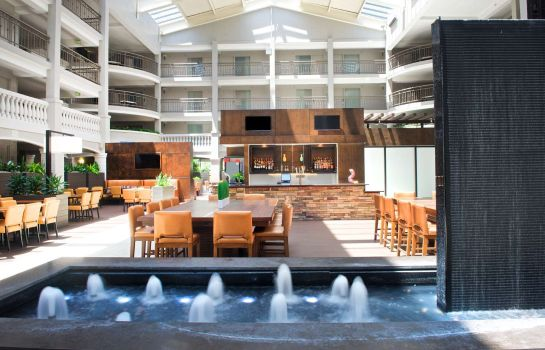 Hotel bar Embassy Suites by Hilton Colorado Springs