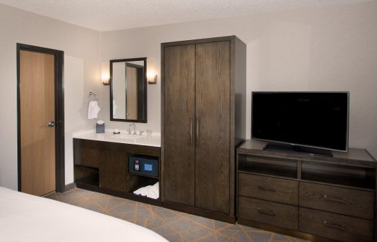 Suite Embassy Suites by Hilton Denver Southeast