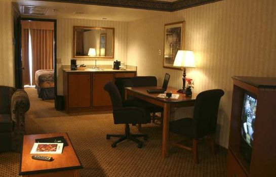 Suite Embassy Suites by Hilton El Paso