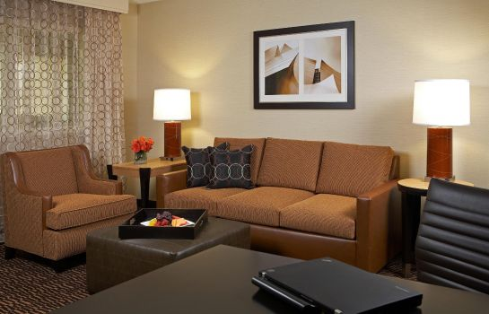 Suite Embassy Suites by Hilton Los Angeles Int*l Airport North