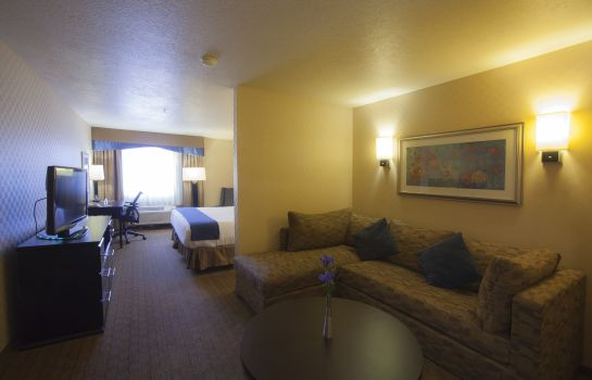 Suite Holiday Inn Express & Suites ALBUQUERQUE-N. BALLOON FSTA PK