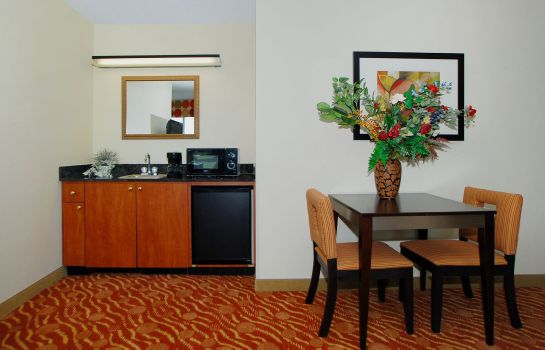 Zimmer EX 19B) Holiday Inn Express & Suites ANDERSON-I-85 (HWY 76