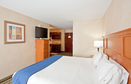 Suite Holiday Inn Express & Suites ANN ARBOR