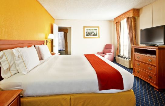 Suite Holiday Inn Express & Suites NASHVILLE-I-40&I-24(SPENCE LN)