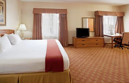 Suite Holiday Inn Express & Suites BROWNSVILLE
