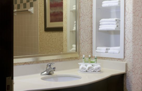 Informacja Holiday Inn Express & Suites BROWNSVILLE