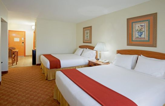 Zimmer Holiday Inn Express & Suites BROWNSVILLE
