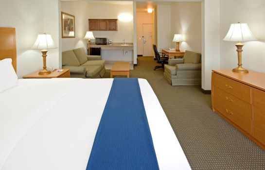 Suite Holiday Inn Express & Suites COLUMBUS