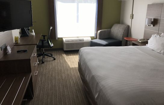 Zimmer Holiday Inn Express & Suites CHATTANOOGA (EAST RIDGE)