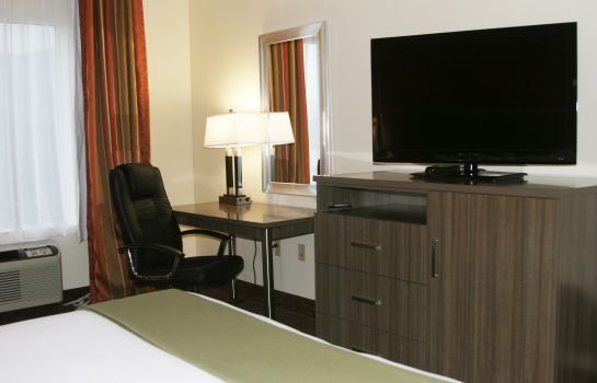 Suite Holiday Inn Express & Suites CHATTANOOGA-LOOKOUT MTN